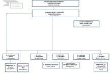 Estructura organizacional: Clave fundamental para el éxito del Contact Center