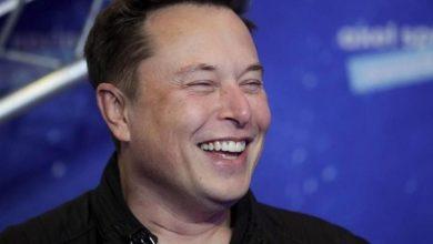 México: Cómo contratar el internet de Elon Musk