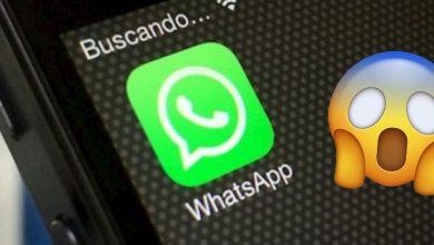 Podrás chatear sin internet, WhatsApp alista esta nueva función