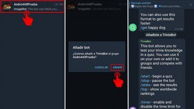 Cómo usar los Bots de Telegram